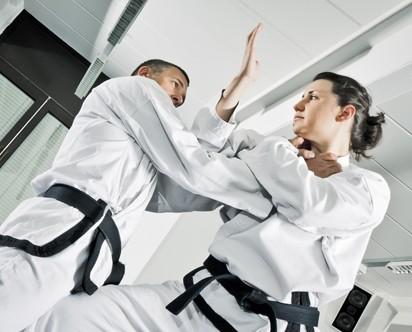 Martial Arts MM