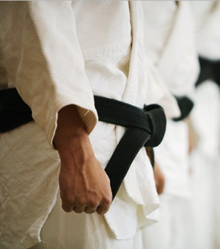 Martial Arts Suite
